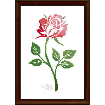 2207. - Róża (PDF)