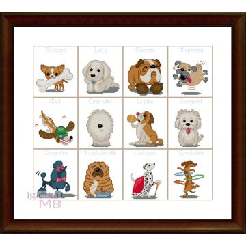 2145. - Kalendarz z psami 2...
